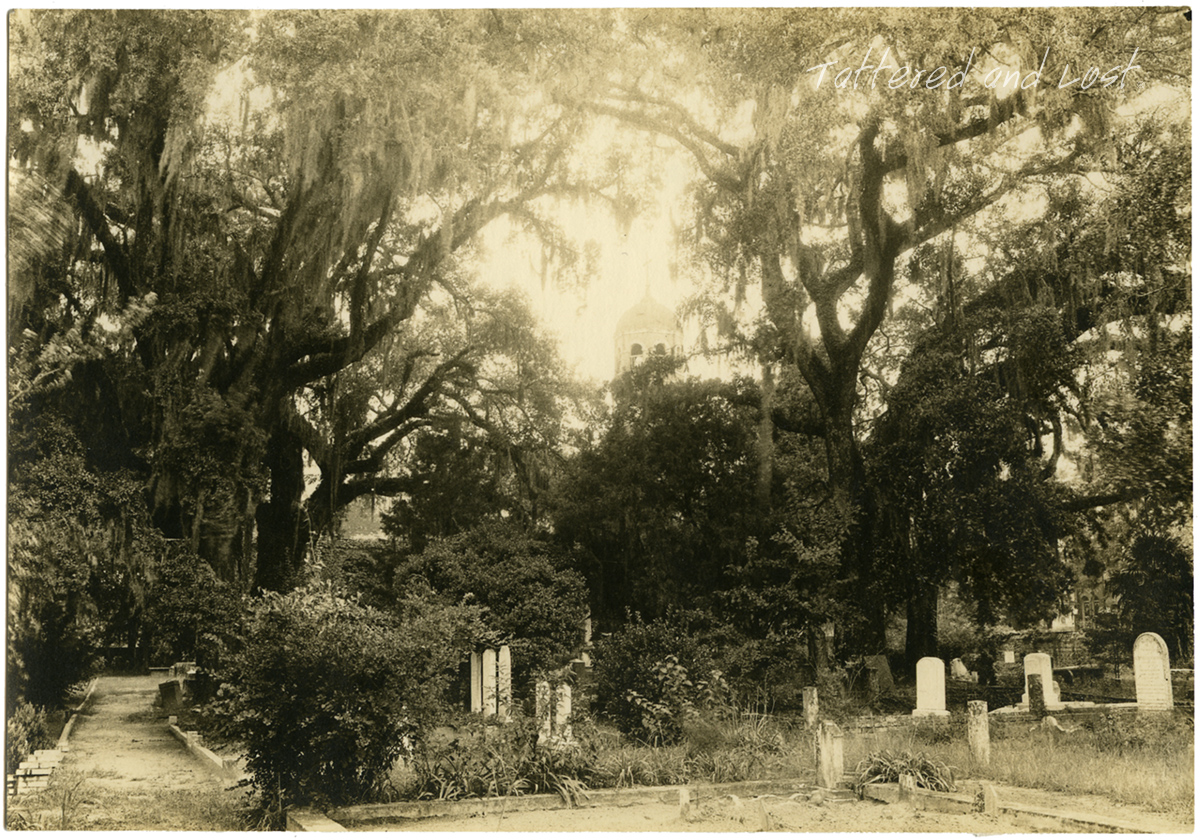 Churchyard of Prince George Winyah_tatteredandlost