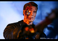 Terminator : No one can stop me... (EdwardLee's collection) Tags: 2 movie toy toys actionfigure day action arnold schwarzenegger collection figure 16 12 terminator judgment t2 neca t800 endoskeleton edwardlees