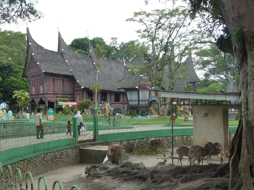 Sumatra-Bukittinggi (81)