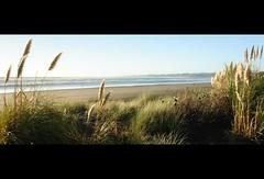 Raglan Beach North (Catching Magic) Tags: ocean newzealand beach nikon waikato tiraudan raglan toitoi tasmansea