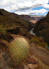 Grand Canyon Overlook, Arizona (Bryan-Long-Photography) Tags: park travel southwest water creek river hall bill waterfall colorado desert hiking grandcanyon grand canyon deer national backpacking springs thunder narrows trailhead kaibabnationalforest billhall northrimgrandcanyon indianhollow northrimofgrandcanyon tapeats monumentpoint forestroad22 billhalltrailhead jugpoint