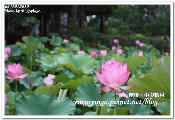 中興新村99年蓮花I2153
