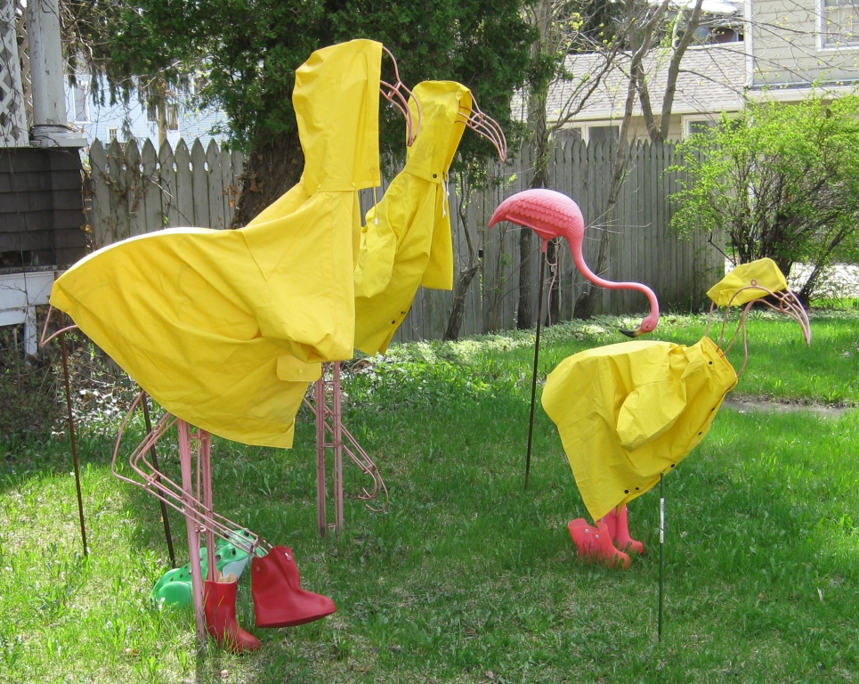 GGW Flamingos