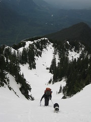 Climbing the final snow slopes to the notch. The NW ridge and Skykomish valley behind.