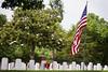 laid to rest under the magnolia (mlaffler) Tags: flag americanflag patriotic fallen magnolia arkansas veteran nwa memorialday veterans fayetteville notforgotten northwestarkansas fayettevillear iremember fayettevillenationalcemetery