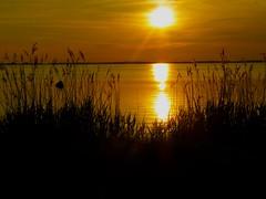 Sonne um 21.30 (jwpriebe) Tags: beach strand ostsee baltischesee ferien hiddensee leuchtturm kloster ostdeutschland neuendorf vitte