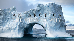 Antarctica - The Reason Why on Vimeo by Jim Lopes (Jim Lopes Photography) Tags: cold ice expedition penguins vimeo melting documentary antarctica glacier adventure iceberg antartica exploration peninsula continent globalwarming facts surpass weddellsea lemairechannel jimlopes vimeo:id=11948026