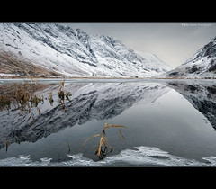 Loch Achtriochtan, Glencoe, Scotland (Billy Currie) Tags: winter sky plants cloud mountain lake snow mountains west reflection ice water grass rock sisters landscape coast scotland three frozen highlands still weeds heather united hill reads deep freezing scottish peak kingdom calm baltic glen ridge og peat valley scree glencoe below growing loch wilderness moor bog barren range walkers stillness dull rubble plantlife climbers peacefull munro rannoch achtriochtan sloaps welcomeuk
