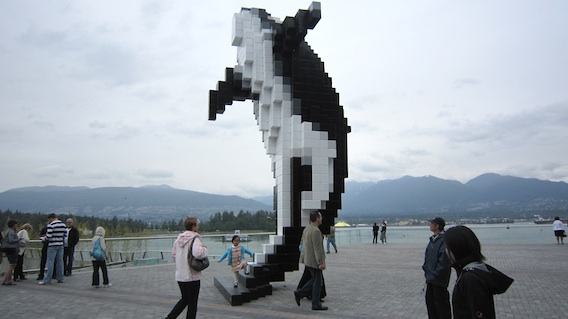 The 8-bit Whale