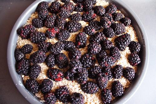 sandi's blackberry crumb cake!