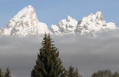 Grand Tetons (HansWobbe) Tags: tree clouds grandtetons tetons schwabacherslanding frhwo 201006trip 2010dcpt