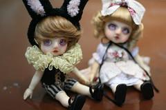 Egg and Wednesday (MsC@ke) Tags: flower make up by outfit doll room eden bjd 16 laprincesa  16cm  mscake cocochoo mscke