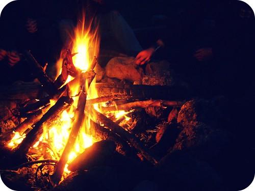 fire (15/365)