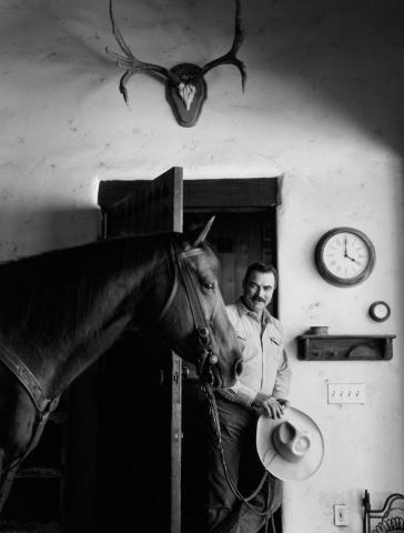 tom selleck horse interior