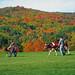 quintessential Vermont