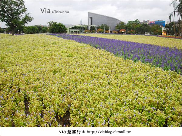 【花博一日遊】via遊花博(上)~從圓山園區開始玩花博!36