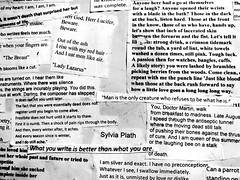 munch (Rae_Gellel) Tags: poem wall sylvia plath scrap poetry