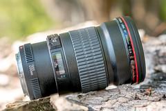 Canon EF200mm ƒ/2.8L II USM (.: mike | MKvip Beauty :.) Tags: sony⍺6300 sonyilce6300 sonyalpha6300 sonyalpha sony alpha emount ⍺6300 ilce6300 canonef200mmƒ28liiusm canon canonl primelens prime samyangfe50mmƒ14asifum samyangfe50mmƒ14 samyangfe50mmf14 samyang 50mm ƒ14 aspherical umc af manualexposure manual handheld camera lens lensporn cameraporn gearshot availablelight naturallight backlight backlighting nature green orange yellow water lake reflections berg germany europe mth mkvip samyangfe50mmƒ14asifumcaf