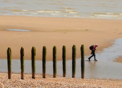Line-up (Conundrum37) Tags: winchelsea beach posts sea groynes sussex