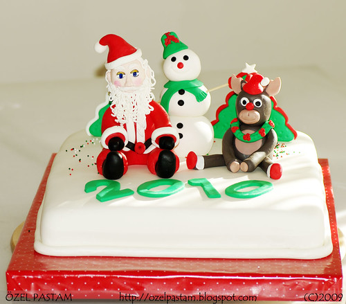 2010 Yılbaşı Pastası / 2010 New Year Cake