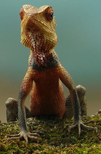フリー画像| 動物写真| は虫類| トカゲ|        フリー素材|