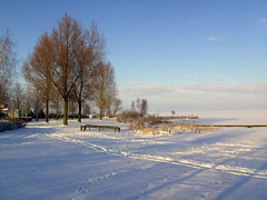 Bast-Bakker paad (Davydutchy) Tags: schnee winter lake snow holland netherlands see mar meer hiver sneeuw january lac neige friesland 2010 frysln langweer langwar langweerderwielen snie langwarderwielen