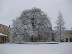 OUP Quad In The Snow