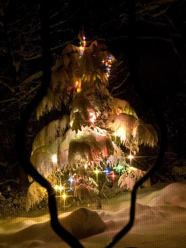 texture nikon neve luci albero pino natale atmosfera notturno stelle esperimenti zanzariera d80 oniricamente naturallyartificial allphotoswanted