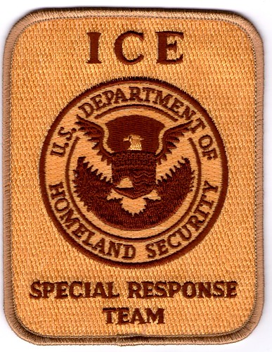 Immigration and Customs Enforcement SRT (Desert)