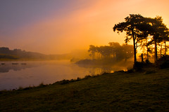 Another Knapps Sunrise. (ericwyllie) Tags: outdoor backgrounds trees ericwyllie 2009 photospecs stockcategories time dawn gloaming eric kilmacolm landscape fog outdoors imagetype morning background inverclyde knappsloch sunrise loch scotland landscapes