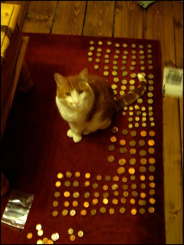 Ginger helping us count our change