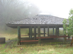 Damp Interpretive Shelter
