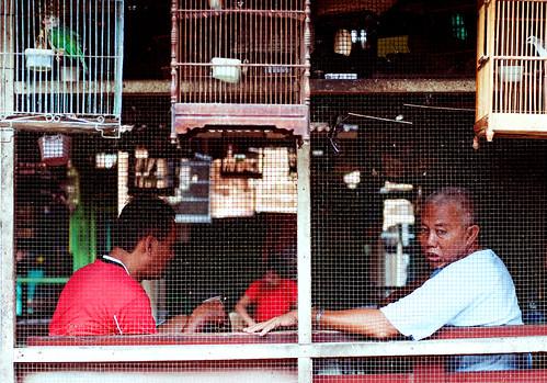 Yogyakarta 11