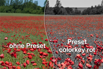 colorkey red - free lr presets for download