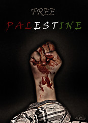 WE WILL NOT GO DOWN (Charisma,) Tags: palestine free gaza