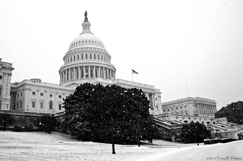 20100130C_Capitol07