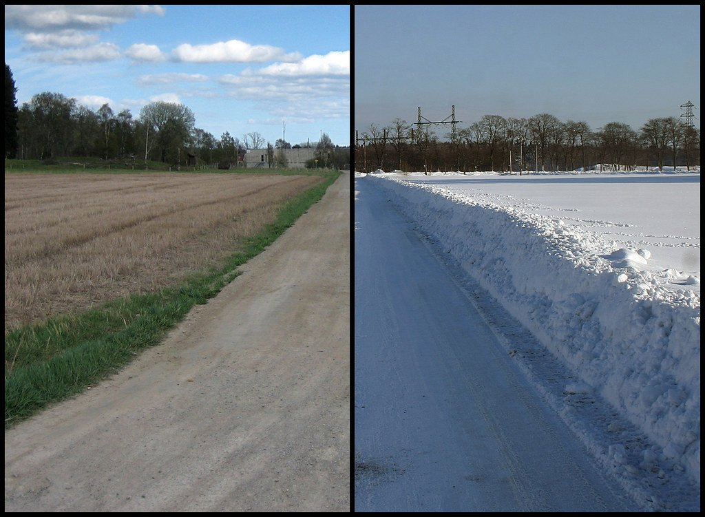 Spring vs. Winter