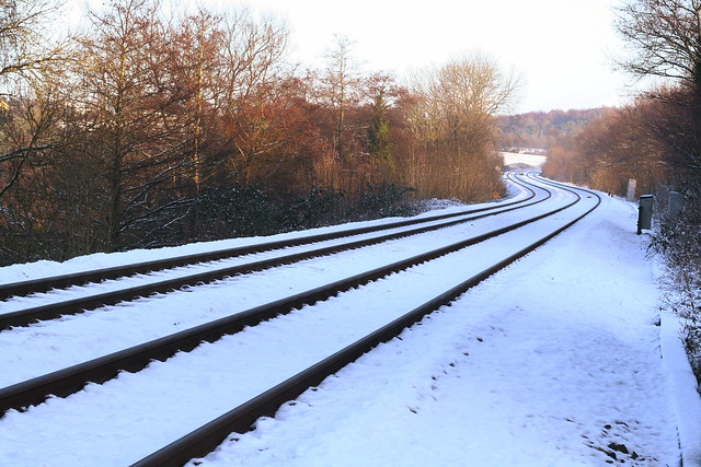 Train Lines Through Snow