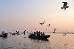 Ganges Early Morning Boats and Birds (Ron Rothbart) Tags: travel sky india water birds river boats asia varanasi ganga ganges benares wwb unseenindia