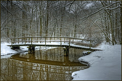 Winter 2010 (Bert Kaufmann) Tags: schnee winter snow holland reflection netherlands forest river beek sneeuw nederland rivière neige nl fluss bos wald paysbas hdr olanda roermond limburg 2010 niederlande reflectie rivier weerschijn haelen middenlimburg leudal winter2010 nunhem leubeek heythuysen koebrug