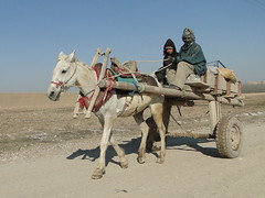 DSC09364 (huxley1312) Tags: afghanistan sharif mazare