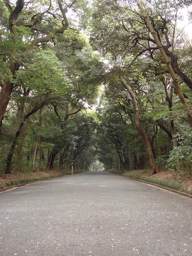 2010-02-17 東京之旅第三天 026
