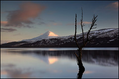 Schiehallion (angus clyne) Tags: sunset red cloud sun snow tree ice sunshine forest dead 50mm scotland high long exposure branch wind spin perthshire blowing shore loch dying setting alder drifting drift drowned flikcr rannoch schiehallion caledonians fairyhill yourwonderland