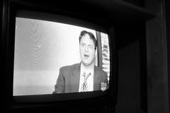 57/365: Dwight
