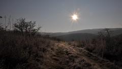 tl ( miklosszulics) Tags: winter snow beautiful landscape hungary tjkp h tl hegyek miklosszulics szulicsiphotooriginal szulicsmiklos szulicsmiklosphotography