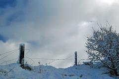 out18 (dallo_dallo) Tags: uk sthelens merseyside eccleston northwestengland