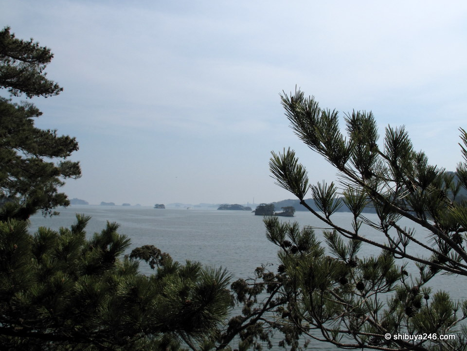 There are over 200 small islands in the bay all dotted with pine trees.