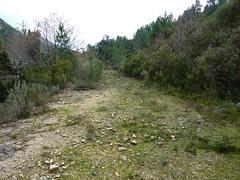 Sentier du ruisseau de Sainte-Lucie : fin du démaquisage juste après le pont du Mela en 02/2010