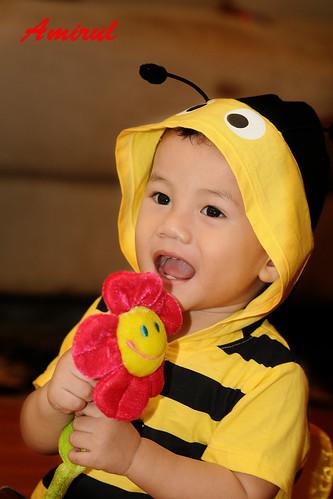 Amirul Bee 7