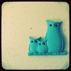 5.1: mama & baby owls
